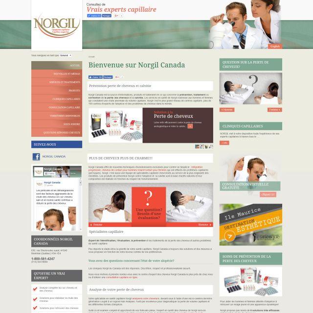 Réalisation site web de Norgil Canada, prévention chute de cheveux