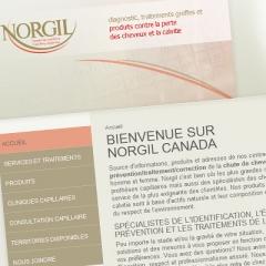 Réalisation site web de Norgil Canada, prévention chute de cheveux1